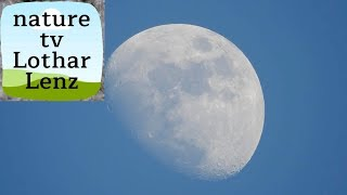 Nikon coolpix P900 83x optical zoom world record - video test on moon