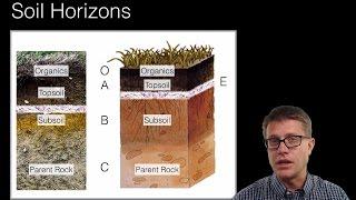 Soil and Soil Dynamics