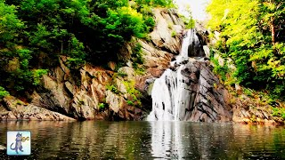 ✧ Relaxing Waterfall・Planet Earth Amazing Nature Scenery・3 HOURS・Best Relax Music・1080p HD ✧