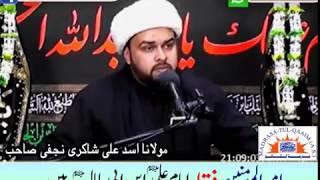 امیرالمومنین کا لقب صرف امام علیؑ سے مخصوص ھے
