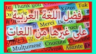 أكثر 10 لغات تأثرت باللغة العربية