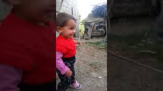 Eğlenceli Çocuk ve Köpek videosu