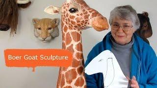 How To Sculpt An Animal Portrait  - Boer Goat, Part 1