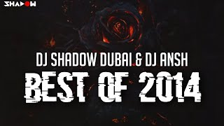 DJ Shadow Dubai & DJ Ansh - Best Of 2014 Mashup