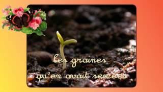 Le chant des saisons.........................poème