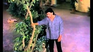 Log Jahan Par Rahte Hain (Sad) | Pyar Ka Mandir | Mithun
