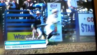 cowgirls revenge
