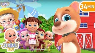 Bingo Dog Song   Number Song   Education preschool learning Nursery Rhymes  by Jugnu Kids