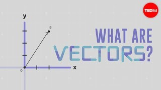 What is a vector? - David Huynh