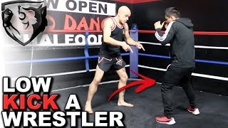 How to Low Kick a Wrestler in MMA (Without Getting Leg Caught)