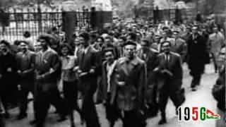 1956: a magyar forradalom és szabadságharc emlékére