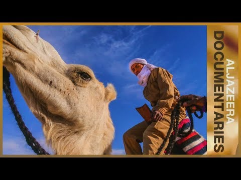 Al Jazeera World Camels in the Outback