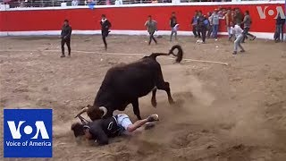 At least 10 injured in first day of bullfighting festival in Peru
