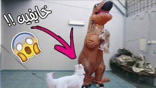 مقلبت كلابي ودخلت عليهم بلبس الديناصور 😂 !!