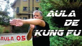 KUNG FU Técnicas de Wing Chun aula 05 #ArtesMarciais