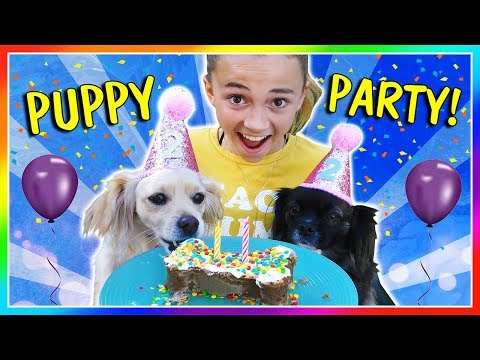 Xxx Mp4 KAYLA THROWS A PUPPY PARTY We Are The Davises 3gp Sex