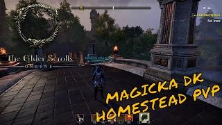 ESO - My (NEW) Magicka Dragonknight Build (Homestead) - NesquikKid