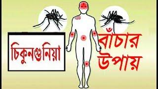 চিকুনগুনিয়া কী? এর লক্ষণ ও প্রতিকার কী? রোগ হলে কি করবেন.. Bangla Health Tips..দেখুন বিস্তারিত