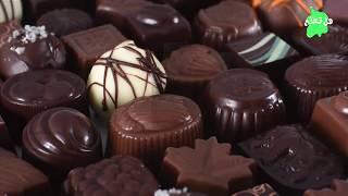 هكذا يتم تحويل حبوب الكاكاو إلى قطع لذيذة من الشوكولا..!!