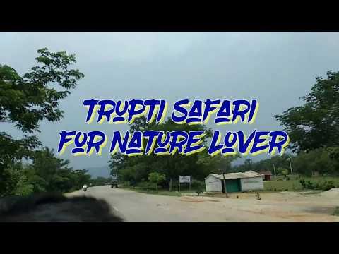 Xxx Mp4 TRUPTI SAFARI ତୃପ୍ତି ସଫାରି Keonjhar District VLOG NATURE S PALACE 3gp Sex