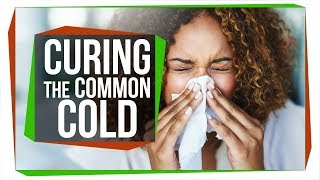 Will There Ever be a Cure for the Common Cold?