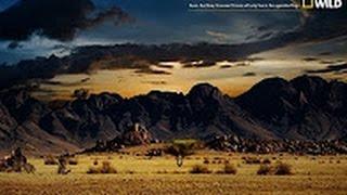 Nat Geo Wild   Nature Documentary   Wildlife Animal   Discovery Channel Animals # 2016 HD 2