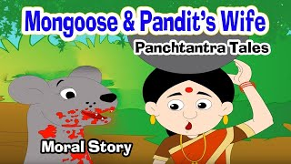 Loyal Mongoose - Moral Stories | Story in English | Panchatantra Stories | Kids Story | Cartoon