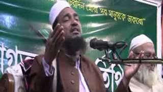 Bangla Waz Maulana Abu Nasar Ashrafee Chandpur Mahfil 2014 Full Video by mamunjobi@yahoo.com