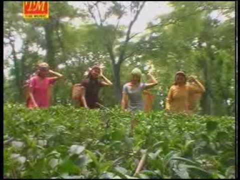 03. Bhedaan Teriyaan Hooo Sanjeev Dixit TM Music
