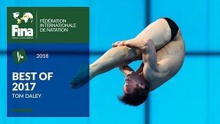 Tom Daley strikes again! - Best of FINA 2017