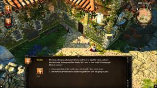 Divinity Original Sin Get the First Two Companions