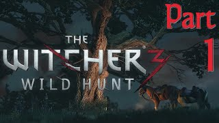 The Witcher 3 Full Gameplay in 60fps / 1080p HD / GTX 780, Part 1: Cutscene HELL (Let's Play)