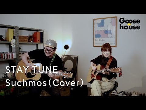 Download STAY TUNE/Suchmos (Cover)