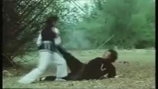 Kungfu movie fight depicting avenging woman - HaKwongLi.mkv