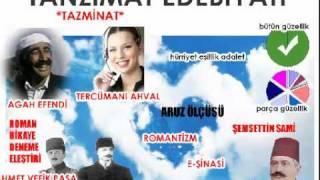 Hafıza Teknikleriyle Edebiyat - LYS Tanzimat Dönemi Tanıtım Videosu