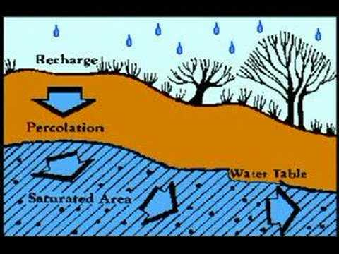 arrest water percolate water essay To arrest ground water decline and augment ground water table to roof top rainwater harvesting (rtrwh): it is a system of catching.