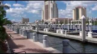Visit City of Tampa Florida  