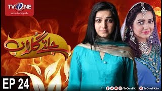Jaltay Gulab | Last Episode 24 | TV One Drama | 3rd December 2017