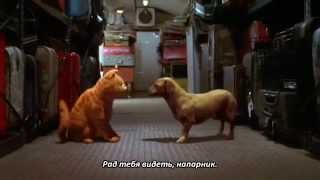 Nostalgia Critic [Ep.288] - Garfield: The Movie (rus sub)