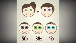 Bebeğinizin gözleri ne renk olacak?