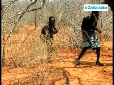 Zabalketa África De caza
