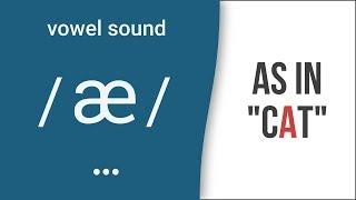 "Vowel Sound / æ / as in ""cat""- American English Pronunciation"