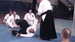 Aikido Yoko Ukemi - Niterói