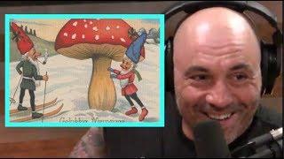 Joe Rogan - Santa Claus Was a Mushroom!