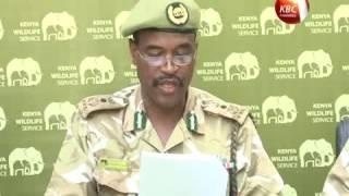 Kenya records gains in efforts to conserve endangered wildlife