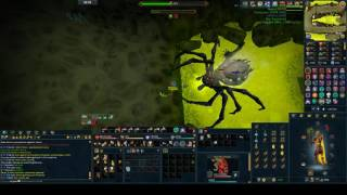 Arraxor Solo Middle Path 300% Enr [Updated]