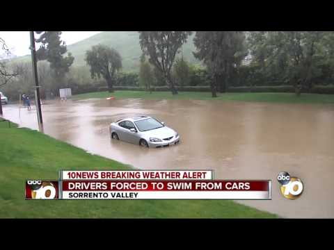 Drivers forced to swim from cars