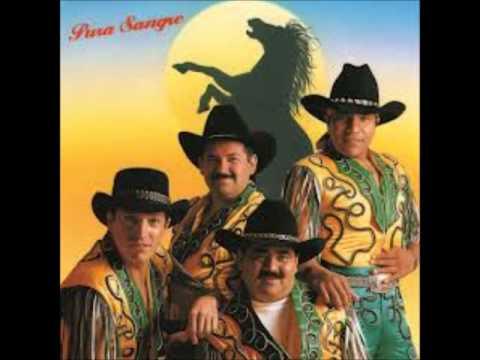 Grupo Bronco Sergio el bailador