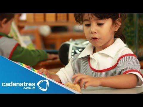 ¿Cómo ayudar a un niño distraído Consejos para padres