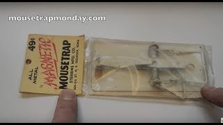 Baby Mouse Sets Off Trap on Its Own Mother. Vintage Magnetic Mouse Trap In Action